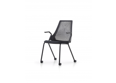 Sayl (meeting chair)